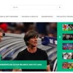 サッカードイツ代表のチケット入手方法